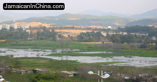 Learning the Language Mandarin sanku bay marsh